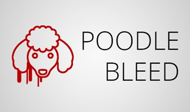 "Security Information from Scala regarding ""Poodlebleed"""
